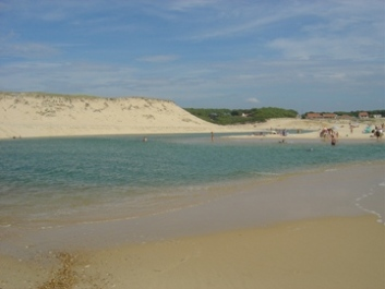 Photo N°7:  Villa - maison Moliets Vacances Hossegor Landes (40) FRANCE 40-4228-1