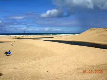 Photo N°8:  Villa - maison Moliets Vacances Hossegor Landes (40) FRANCE 40-4228-1